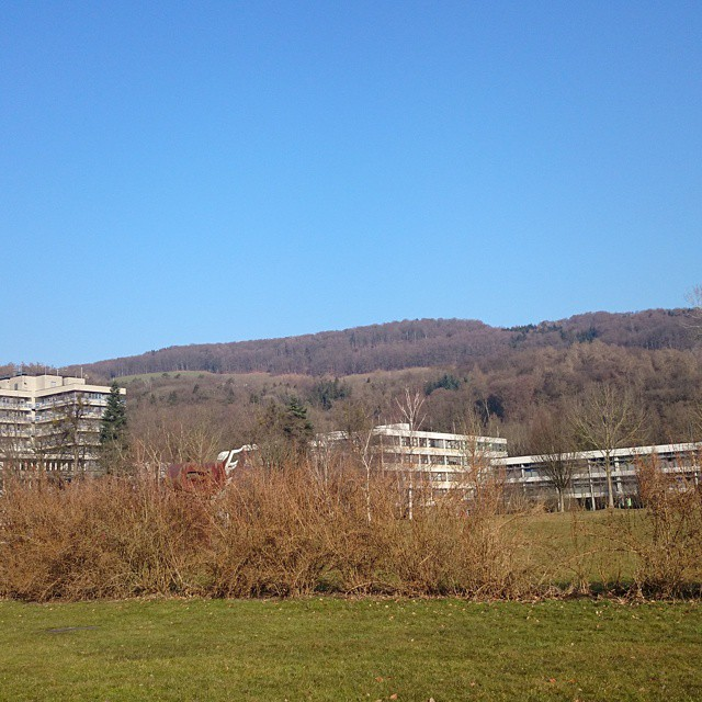 Beautiful weather in Linz!!