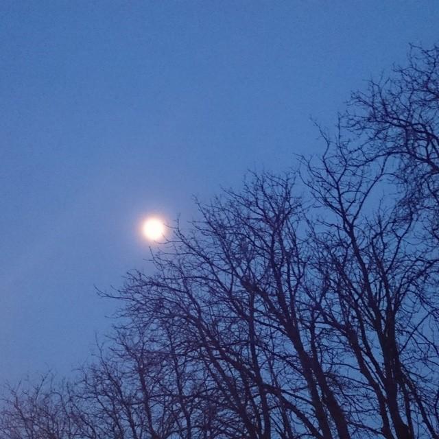 Moon over Linz!